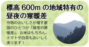 hizumo95_03